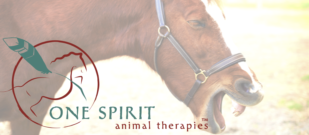One Spirit Animal Therapies
